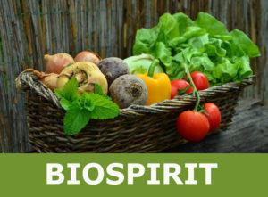 Biospirit productes ecològics Celrà (11)